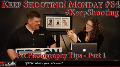 Pet Photography Tips  - Part 1